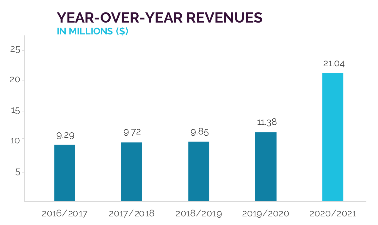 Year Over Year Revenue Chart